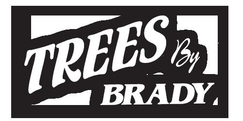 Trees By Brady – Brady Bennett – Winchester, WI